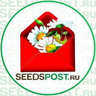 Промокоды и Купоны для Семена Почтой