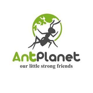 Промокоды и Купоны для AntPlanet