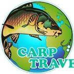 CarpTravel картинка профиля