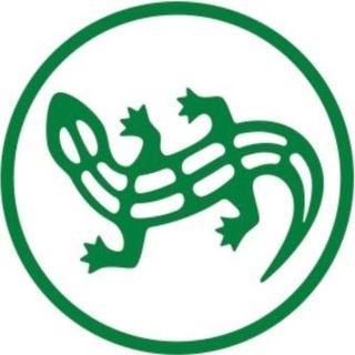 Промокоды и Купоны для Salamander